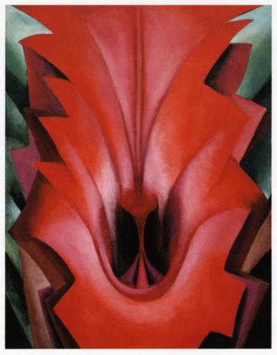 Figure 9 Georgia OKeeffe Inside Red Canna 1919